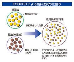 ecopro_02.jpg