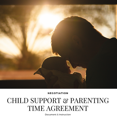 Child Support & Parenting Time Negotiation Service