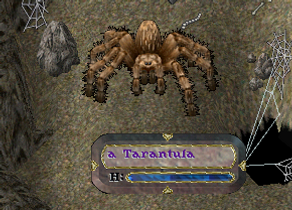 tarantula.png
