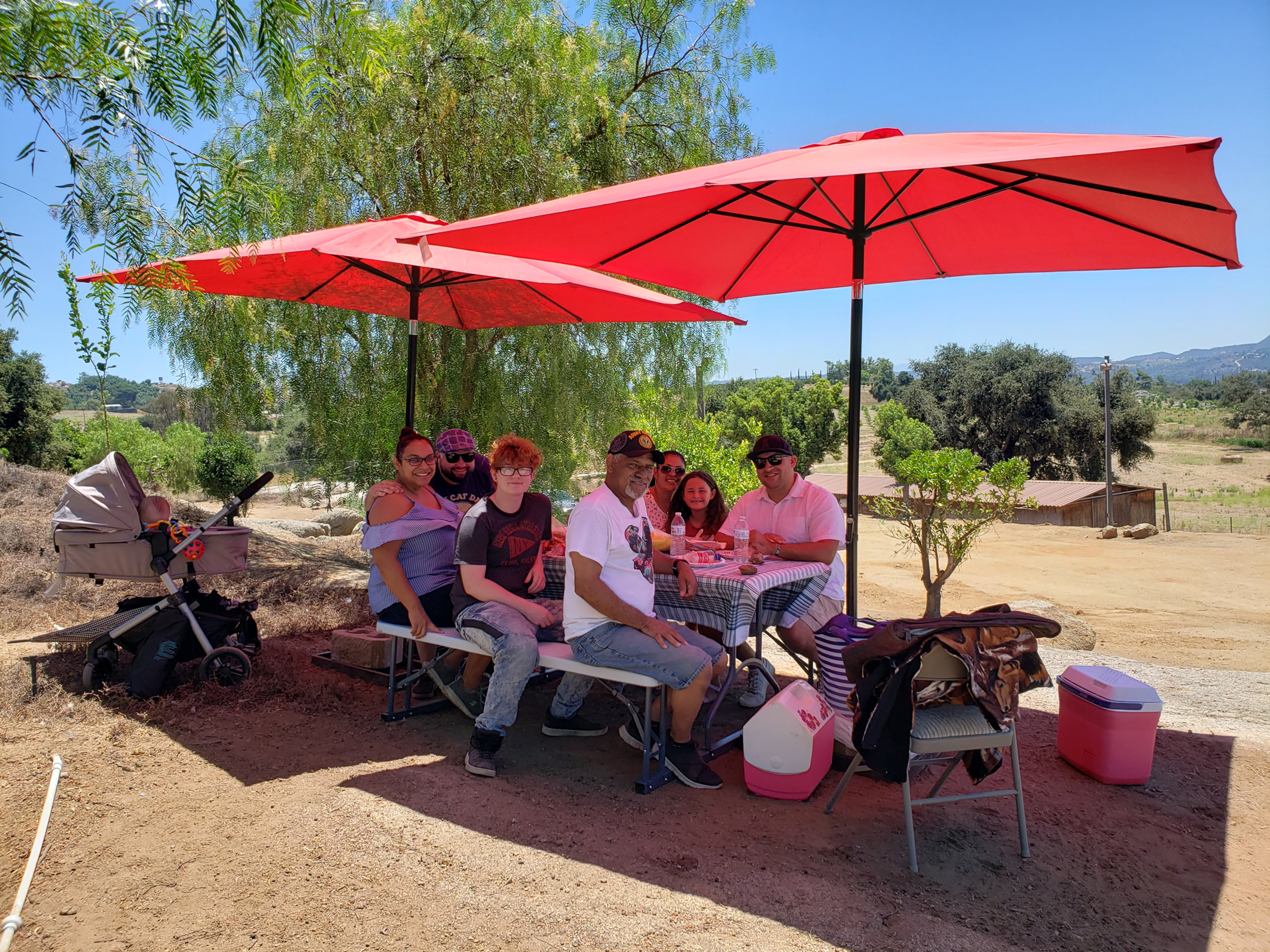 30 Minute Picnic Area after your Tour
