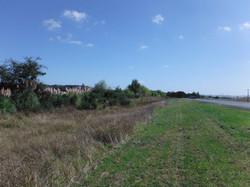 Gateway (Meremere) Pre Planting