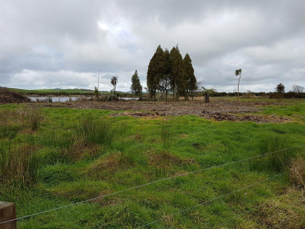 Lake Ohiniwai Recreational Reserve Pre Planting