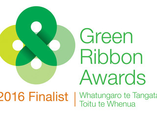 Waikato RiverCare Inc. Recognised by Green Ribbon Awards