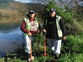 Waikato RiverCare Successfully Completes Autumn Planting