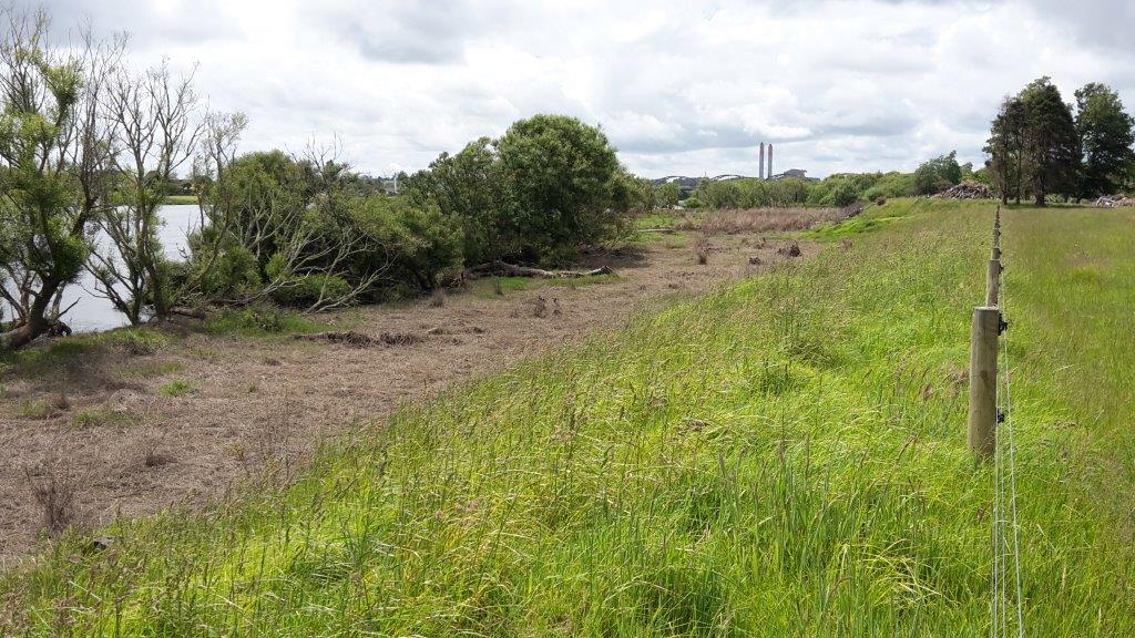 Huntly Waterworks Pre Planting
