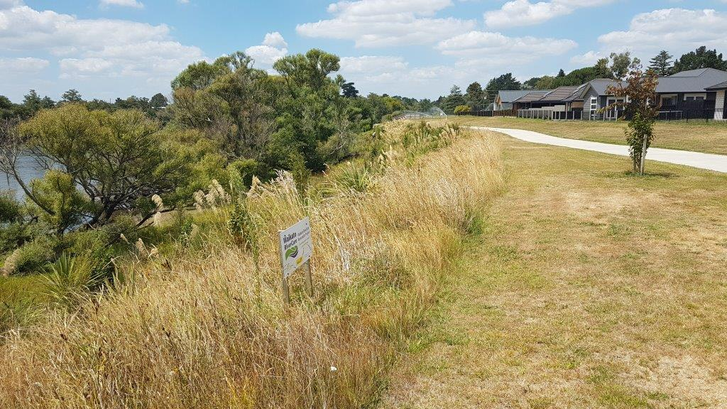 Te Awa River RIde (Stage II) Post Planting