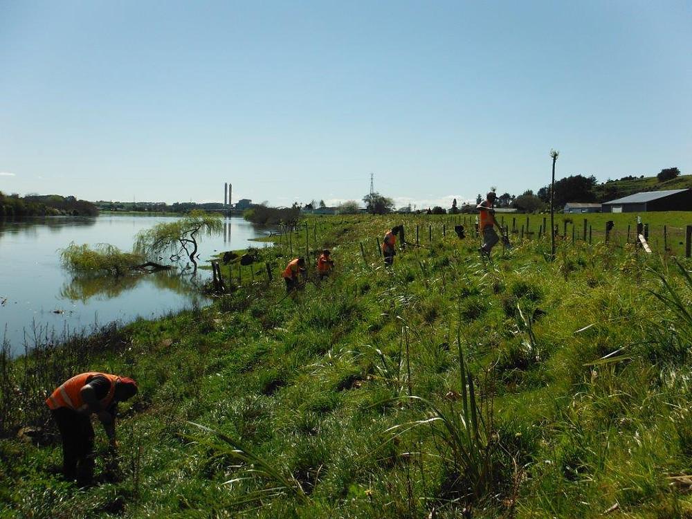 Waterways,Wetlands&Environmental Develpoment team in action.jpg