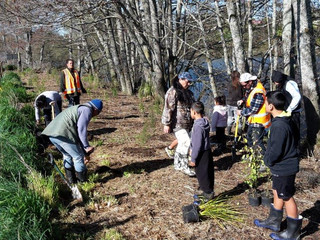 Whaanau Planting Project a Success