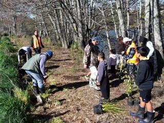 Kirkwood Whānau Planting Day