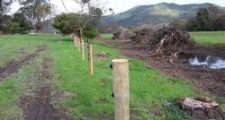 Taupiri Ki Weanganui Post Clearing/Fence Pre Planting