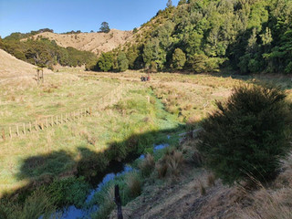 Trialling Gallagher's Fencing on Flood Prone Areas of the Wai o Te Atua Stream Project