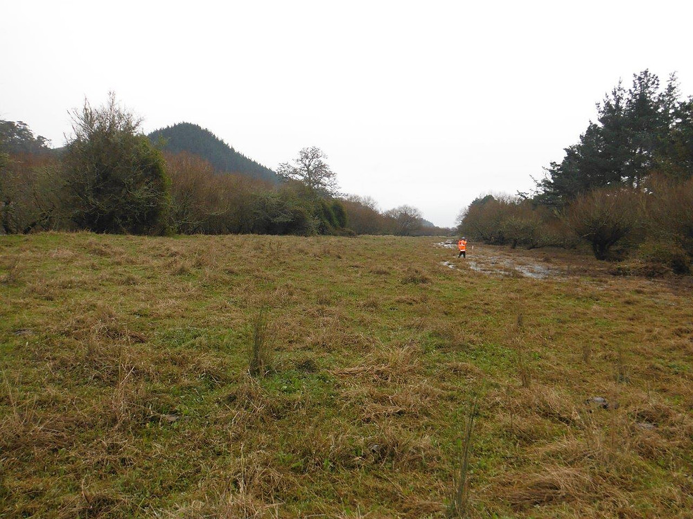 Survey photos of marks (7) shows backwater which will be included in project Oct