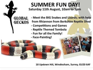 We will be face painting at Global Geckos fun day in Windlesham. 11th August 2018
