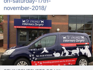 Face painting at St Vincents Veterinary Wokingham .Open Day 17th November 2018