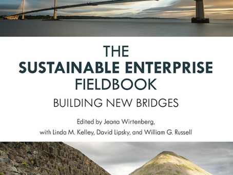 The Sustainable Enterprise Fieldbook - 2nd edition