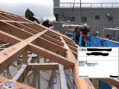屋根剛性.jpg