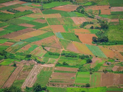 Mauritian Countryside