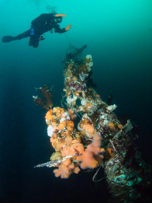 The Wreck of Gudrun Gisladottir