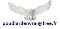 Hedwige mail Poudlard.png