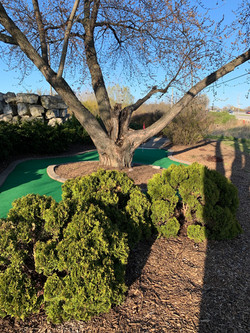 Mini Golf Hole #2