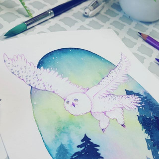 Hey guys! Did you see my snowy owl paint