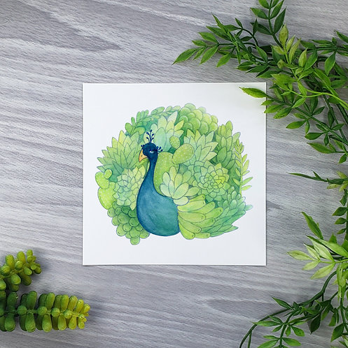 Succulent Peacock Fine Art Print