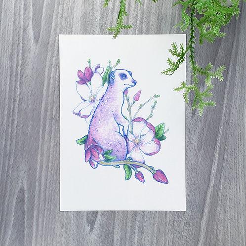 Magnolia Meerkat Fine Art Print