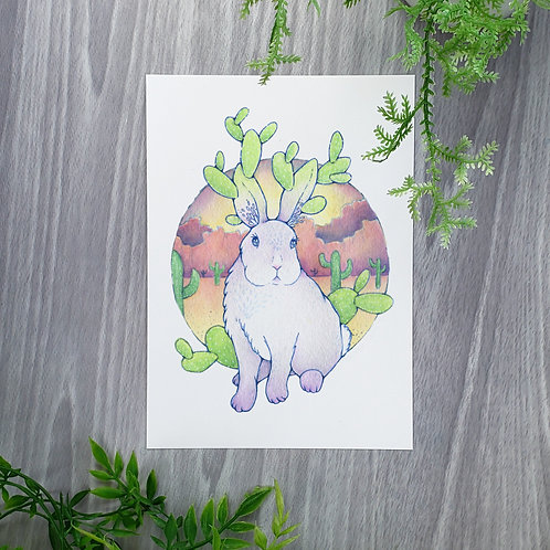 Bunny Ear Cactus Fine Art Print