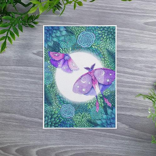 Lunar Glow Moths Fine Art Print