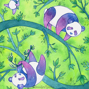 Pandas11x14_watermark.jpg