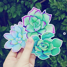 three bright watercolor succulent durable vinyl sticker set