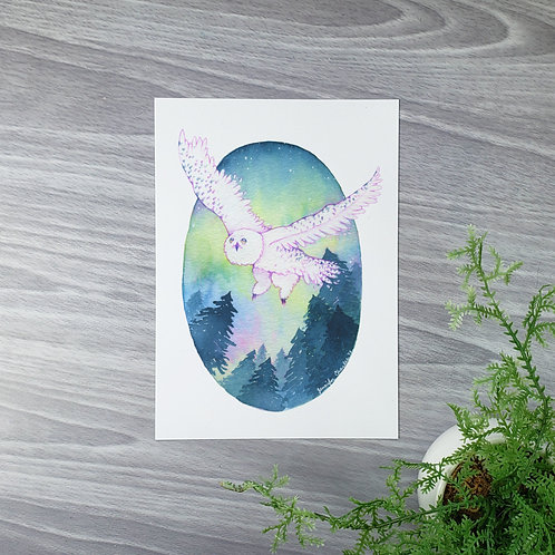 Spirit Owl Fine Art Print