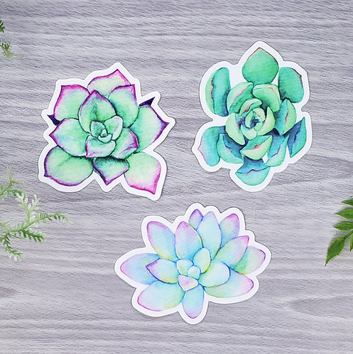 Bright Succulent Sticker Set