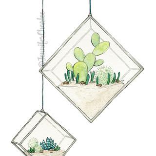 HangingSucculents2_Watermark.jpg
