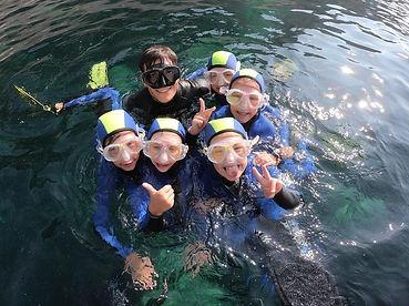AIDA Youth - Silver Dolphin