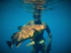 Hellas Freedivers - Spearfishing Buddy (Ψαρευτικό Ζευγάρι)