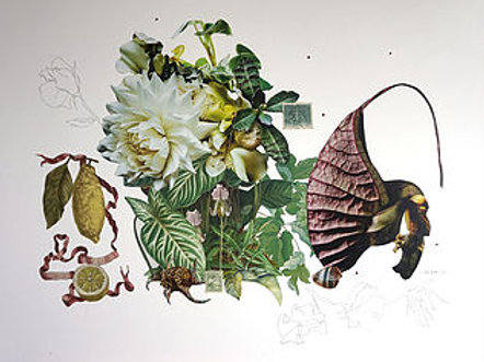 Paper Collage #101