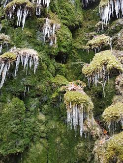la source gelée