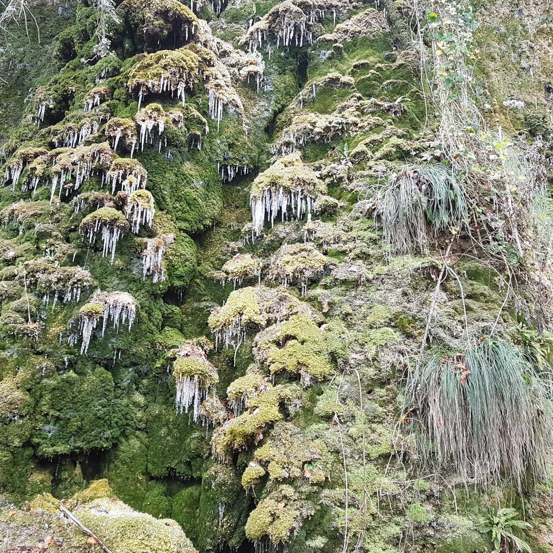 La source en hiver
