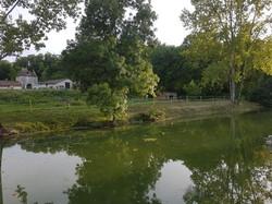 point de vue depuis l'étang