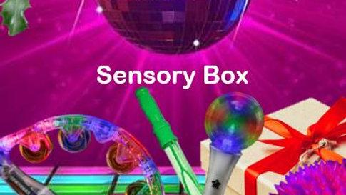 Disco Sensory Box