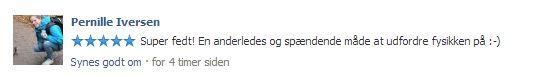 anmeldelse_pernille_iversen.JPG