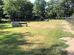 Dog Park August 2020.jpg