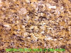 STA. CECILIA GOLD (2 CM)-#5205-2