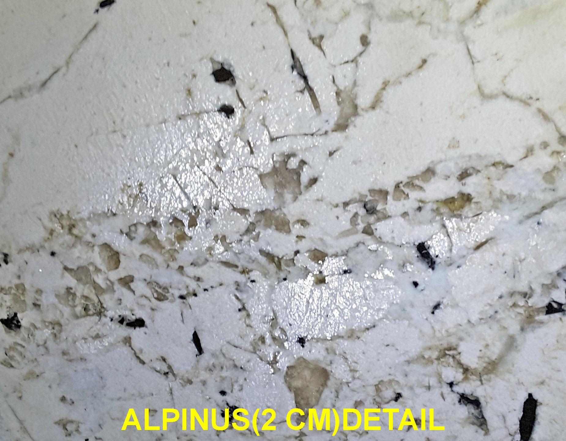 ALPINUS (2 CM)-#11860 (2)DET.
