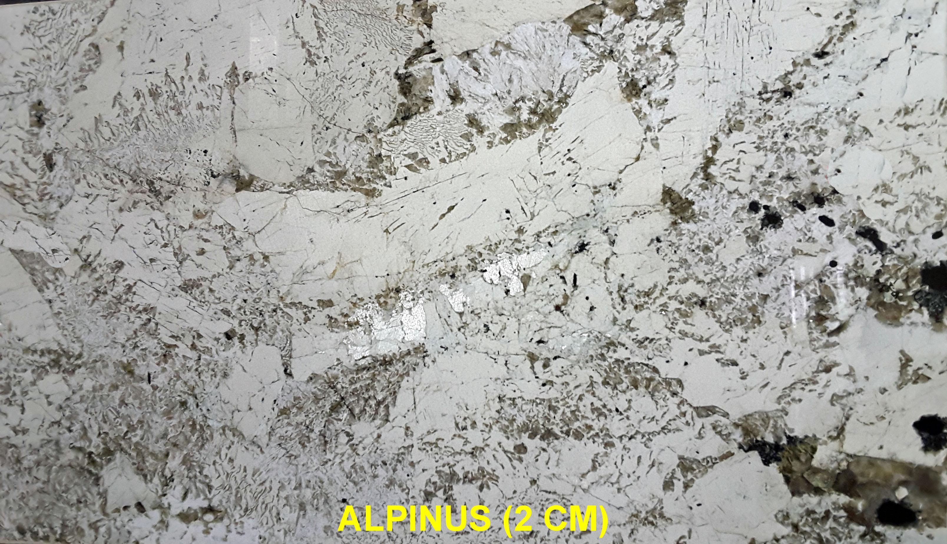 ALPINUS (2 CM)-#11860 (2)