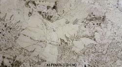 ALPINUS-3 (2CM)-#11860