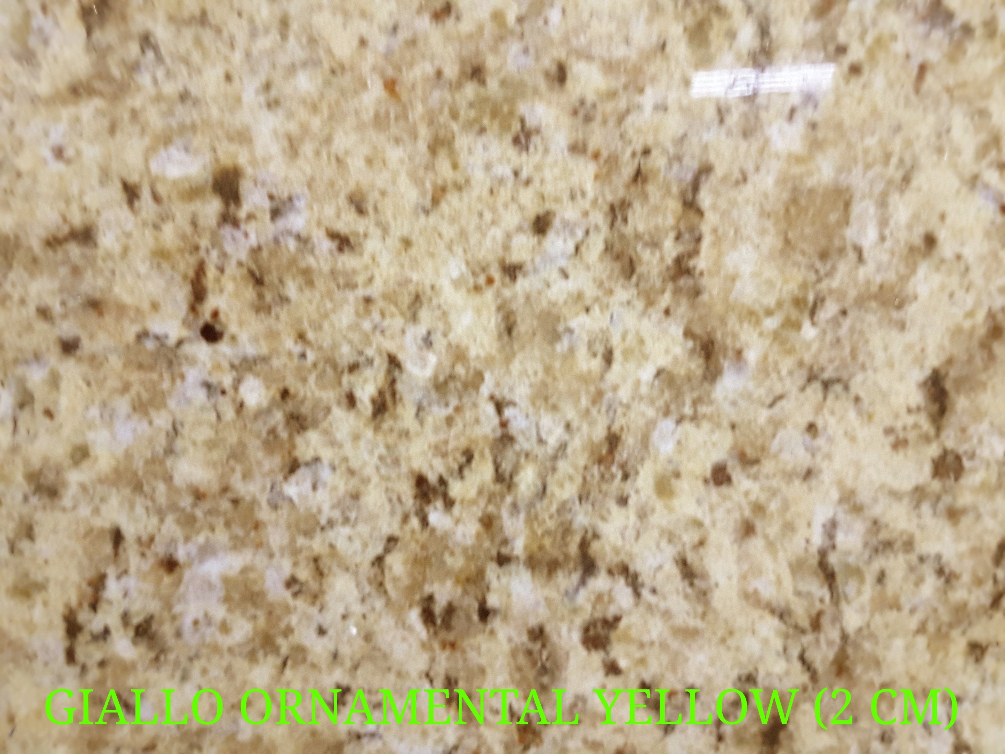 GIALLO ORNAMENTAL YELLOW (2 CM)-2