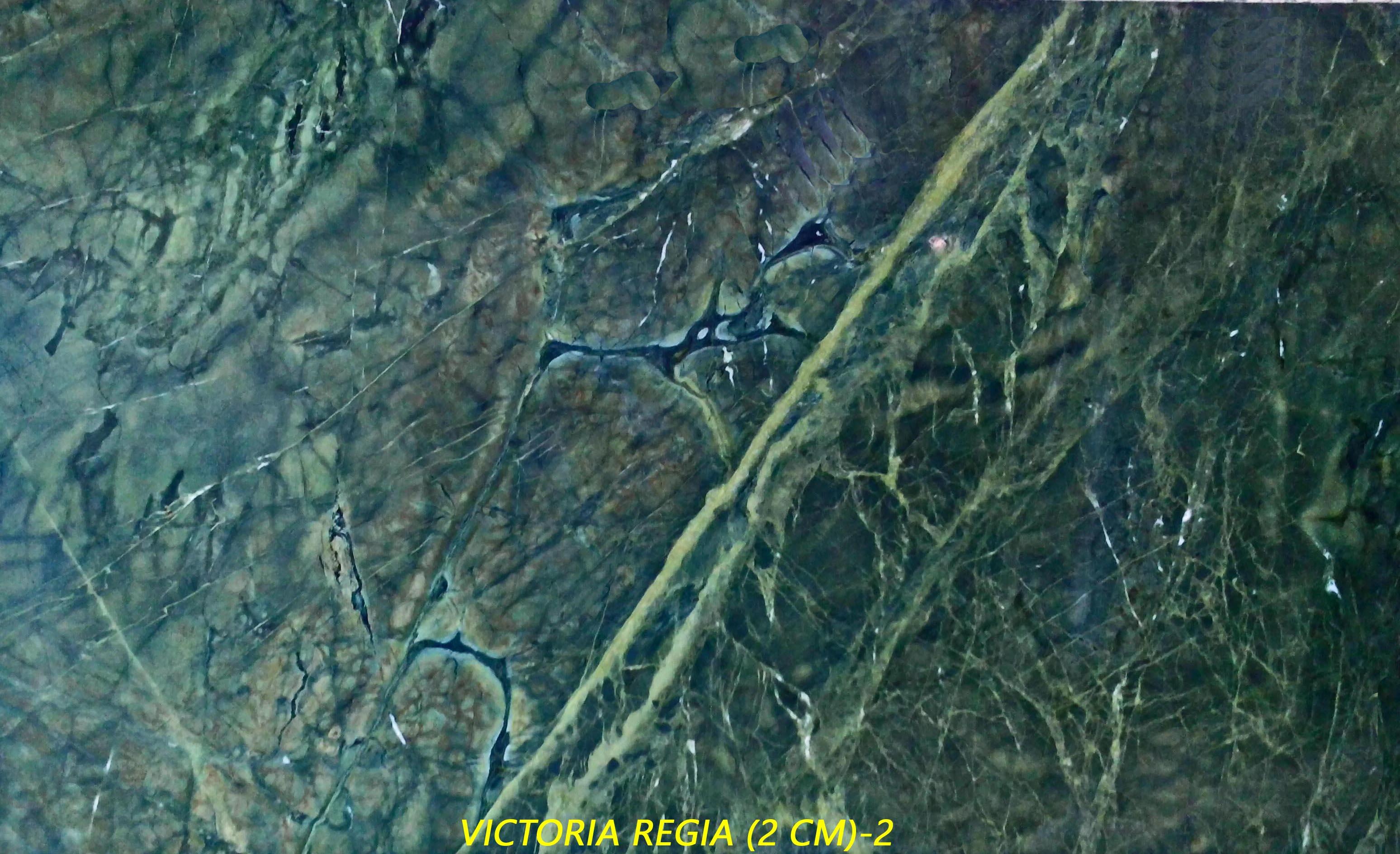 VICTORIA REGIA (2 CM) #1106.jpg