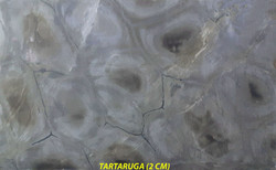 TARTARUGA (2 CM)-#28224